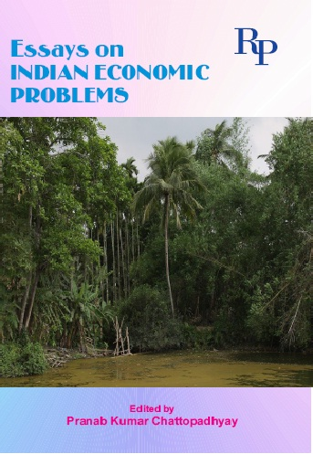 Essay on problems of indian women