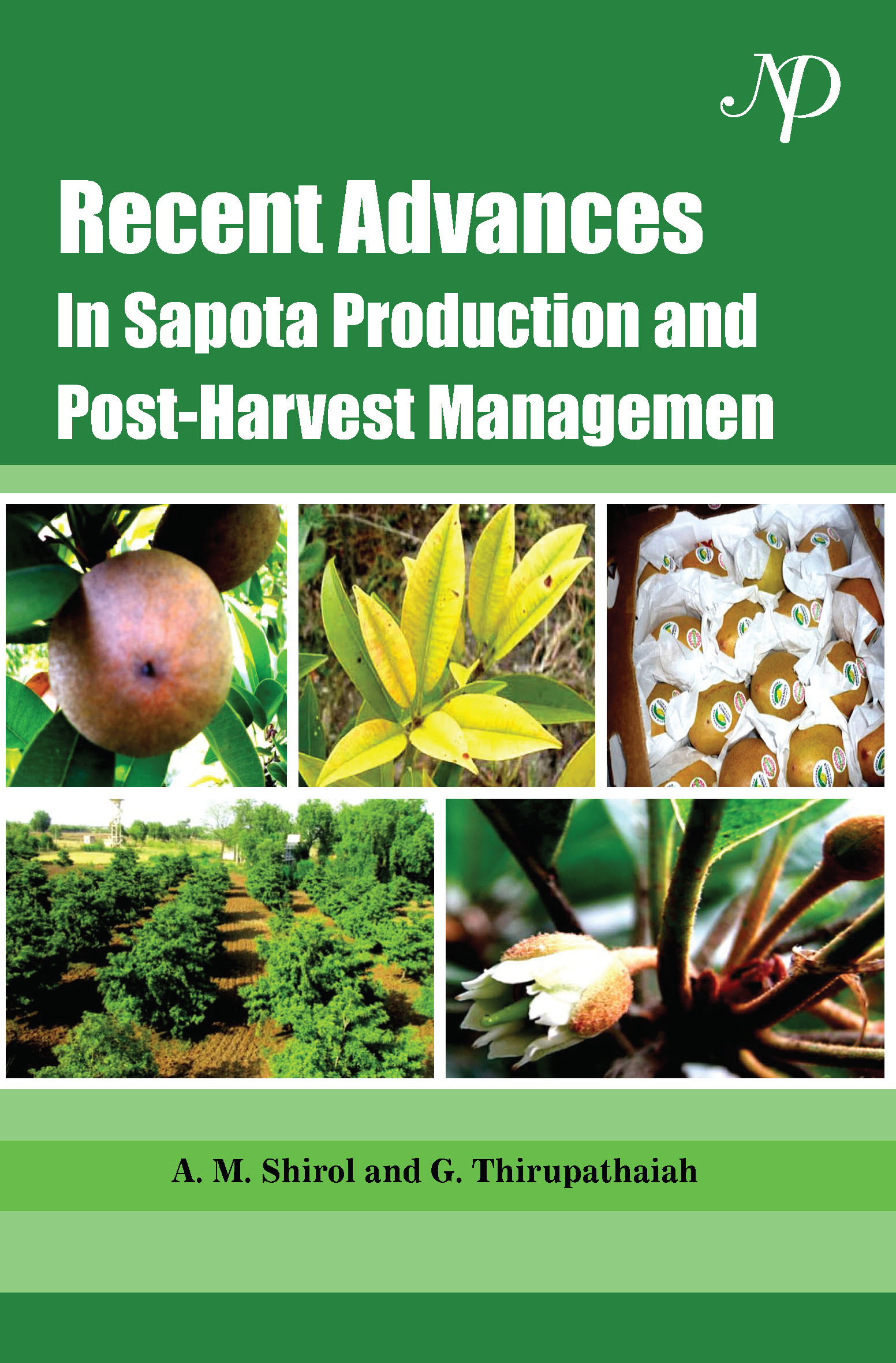 Sapota- Improvement, Production and Post - Harvest Management.jpg
