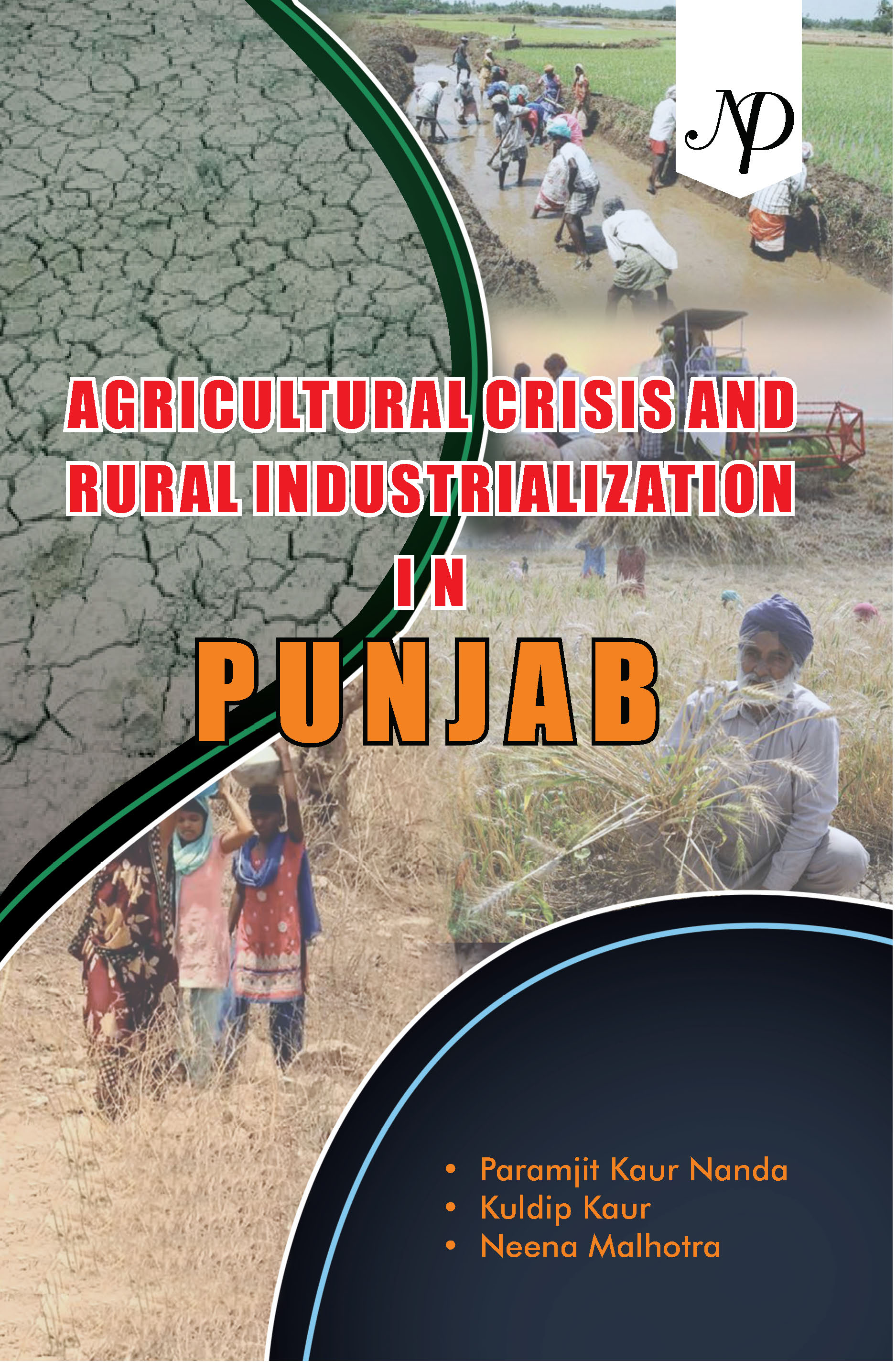 Agricultural crisis and Rural industrialization in Punjab cover.jpg